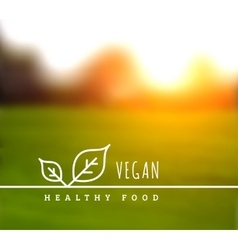 concept of natural vegetarian health food vector image vector image