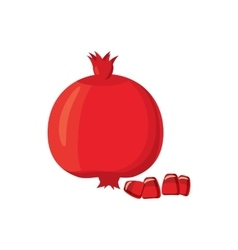 Ripe pomegranate icon cartoon style vector