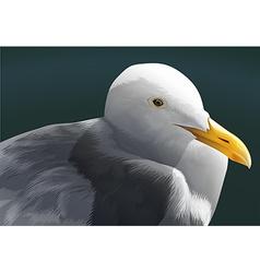 A seagull vector