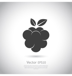 Raspberry icon silhouette vector