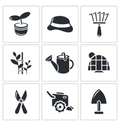Garden icon collection vector