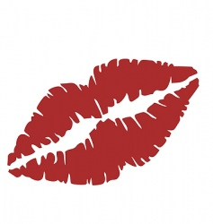 close up of lips vector image vector image