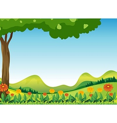 Natures scenic view vector image