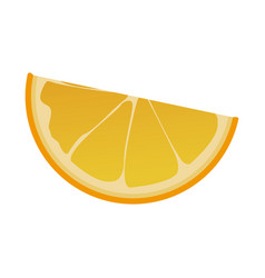 Slice orange citrus fruit harvest vector