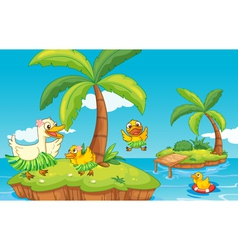 duck and ducklings on island vector image