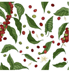 Elegant botanical seamless pattern with coffee vector