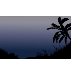 Banana tree and grass silhouette vector