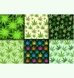 green marijuana background vector image vector image