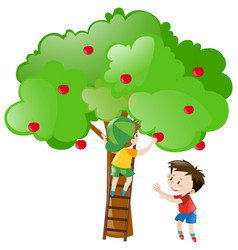 Two boys picking apples from tree vector