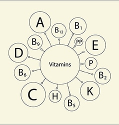 Essential vitamins vector