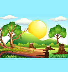 scene with chopped wood in the field vector image