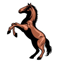 Prancing horse vector image