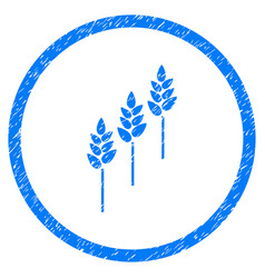 Wheat plants rounded grainy icon vector