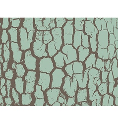 Bark close up texture grunge vector