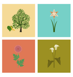 Assembly flat flower calla aster vector