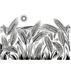 Wheat field vector