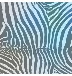 Zebra background vector image vector image