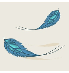 Colorful hand drawn feathers isolated vector