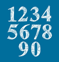 Calligraphic numbers numeration vector