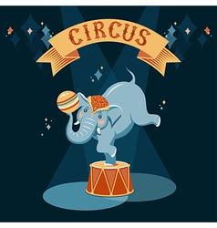 Circus elephant vector