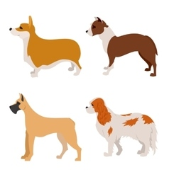 Collection of purebred dogs flat design vector