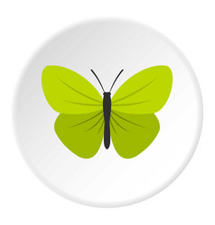 Insect butterfly with small wings icon circle vector