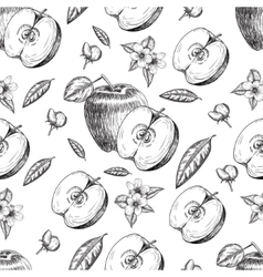 Seamless of hand drawn apple Vintage sketch style vector image vector image