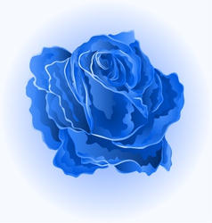 Blue rose simple symbol of love vector
