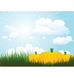 pumpkins in grass vector image vector image