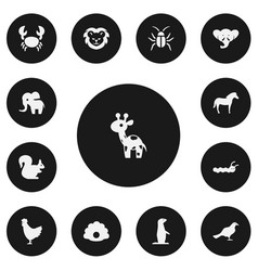 Set of 13 editable zoology icons includes symbols vector