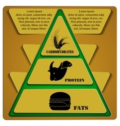 Food pyramid fats protein carbohydrates vector