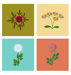 assembly flat flower paeonia vector image vector image