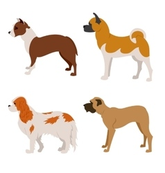 Collection of purebred dogs isolated on white vector