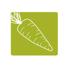 Label fresh carrot organ vegetable food vector