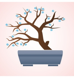 Japan or china bonsai small tree in pot eps10 vector