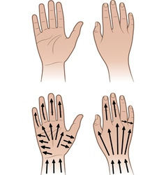 Woman man hands with massaging lines vector image