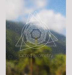 Boho sacred geometry mandala on tropic background vector