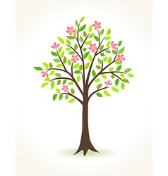 Blossom tree with pink flowers vector image vector image