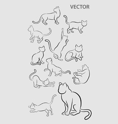 Cat Gesture Sketches vector image vector image