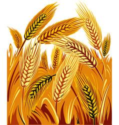 Wheat field under a sun vector
