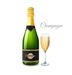 Champagne realistic set vector