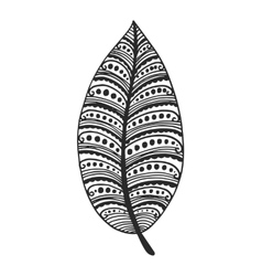 Tribal feather vector