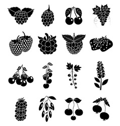 Berries icons set vector image