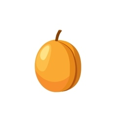 Fresh apricot icon cartoon style vector image