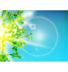 Green leaves background and sun vector image