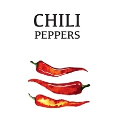 Red chili pepper isolated poster on white vector