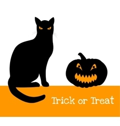 pumpkin and black cat vector image