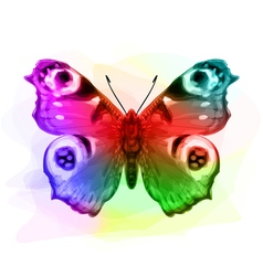 Butterfly inachis io iridescen colours vector