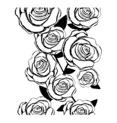 Monochrome sketch of roses pattern vector