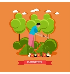 Gardener trimming hedges flat design vector